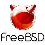 FreeBSDのメモリ使用量を確認するメモ
